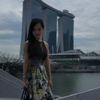 yangying Main Photo