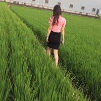 Yinxiaoqian Pictures