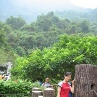 yaojinghan Main Photo