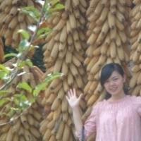 lianghuan Main Photo