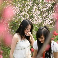 caopingwen News Feed Photos