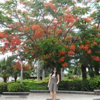 sunjiao News Feed Photos